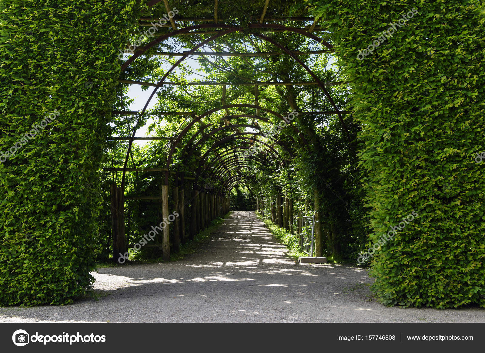 Park Als Tuin : Poort van boek heggen en een begroeide boog pergola als een