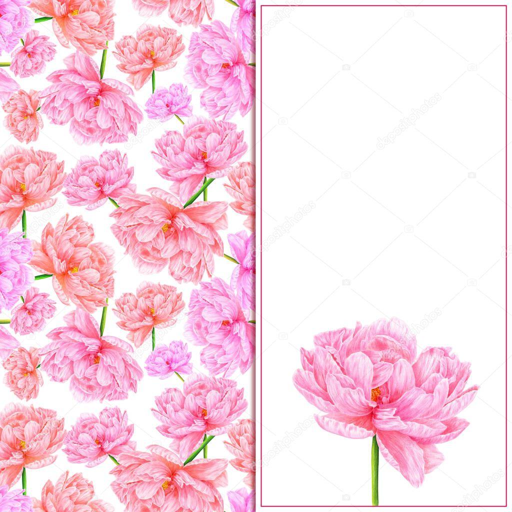 Нумерация цветов текста