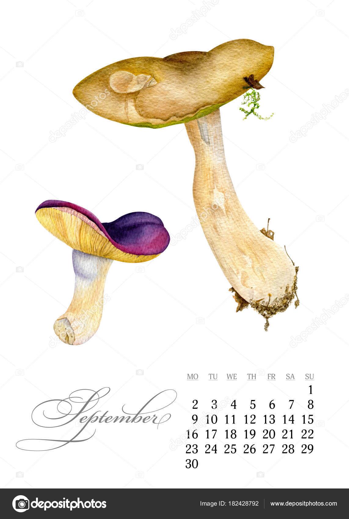 Calendario Funghi.Elegante Calendario Stampabile 2019 Settembre Funghi Dell