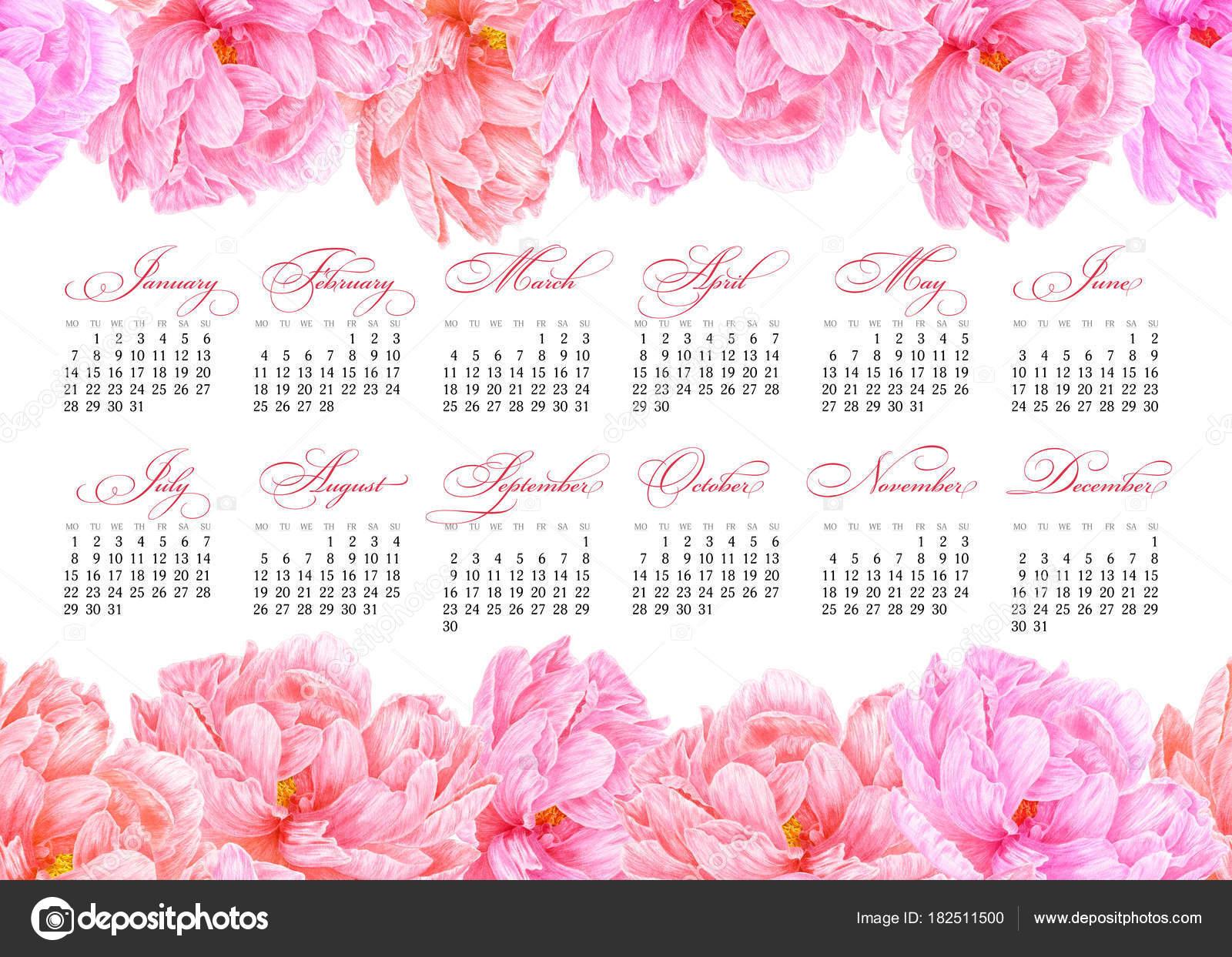 2019 nyomtatható naptár Elegáns nyomtatható naptár 2019. Akvarell rózsaszín bazsarózsa  2019 nyomtatható naptár