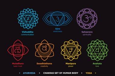 Chakras system of human body - used in Hinduism, Buddhism, Ayurveda. Line art  version. For design, associated with yoga. Vector Sahasrara, Ajna, Vishuddha, Anahata, Manipura, Swadhisthana, Muladhara stock vector