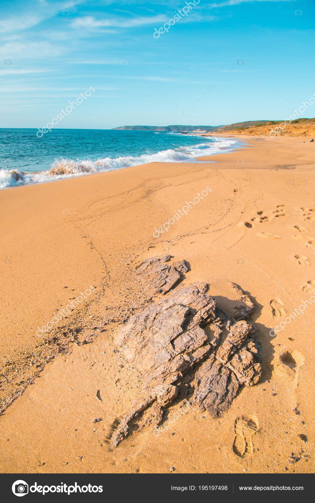 Vista Verticale Con Una Roccia Sulla Spiaggia Con Il Mare Sullo