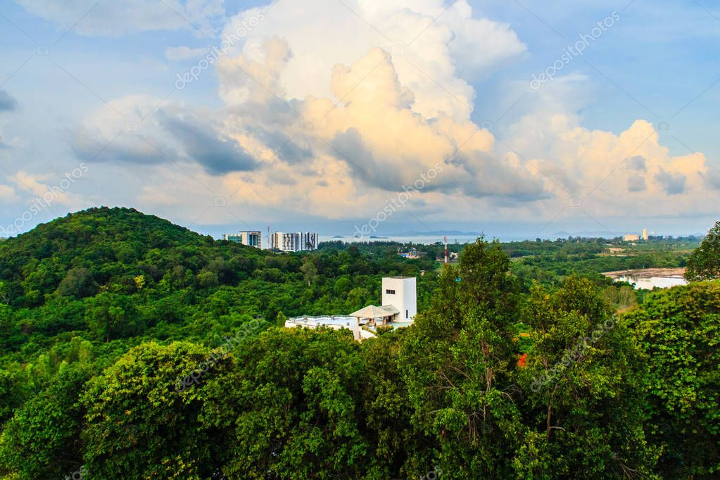 Evergreen forest at Hinsuay Namsai beach, Rayong, Thailand. The growth of tourism and construction of hotels and resorts made reduce area of mangrove forests. Development, sustainable and deforestation concept.
