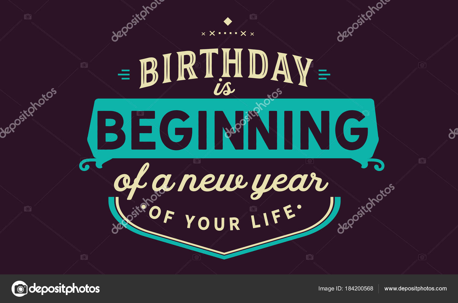 birthday beginning new year your life stock vector