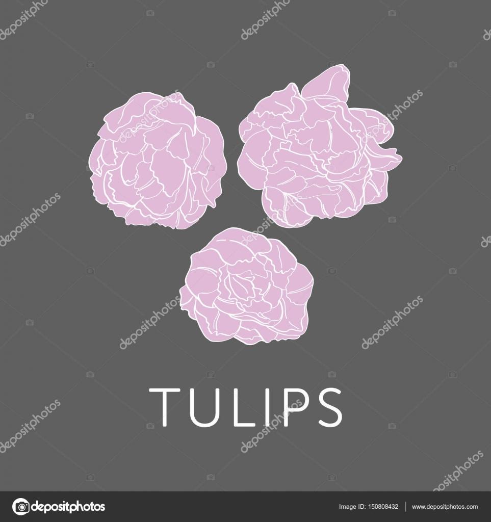Tulips flower bouquet outline sketch stock vector julijagrozyan tulips flower bouquet outline sketch stock vector izmirmasajfo