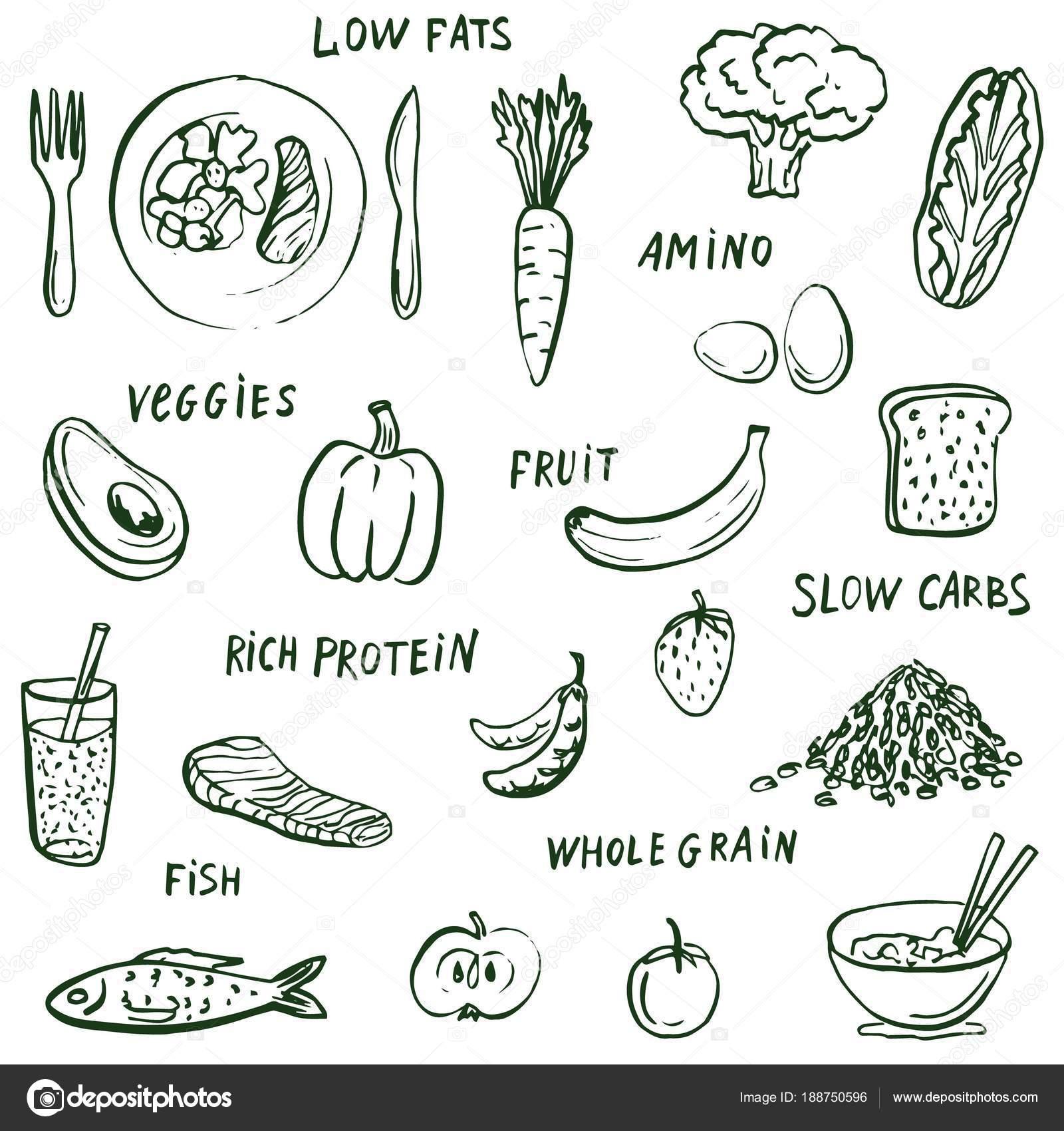 Rysunki Zywnosci Zdrowego Jedzenia Slowa Tlo Grafika Wektorowa