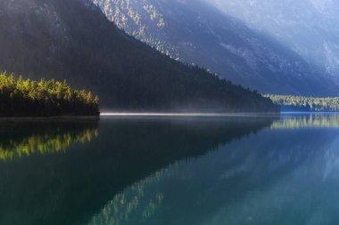 Autumn season theme. Detail of colored forest. Plansee, Tyrol, Austria.