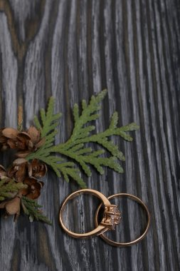 Wedding rings and thuja branch with cones. On brushed pine boards painted in black and white.