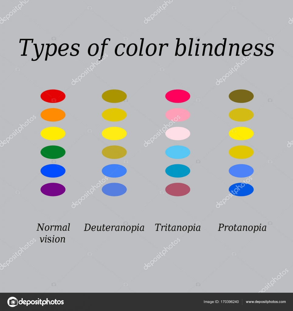 types of color blindness  eye color perception  vector illustration on a  gray background —