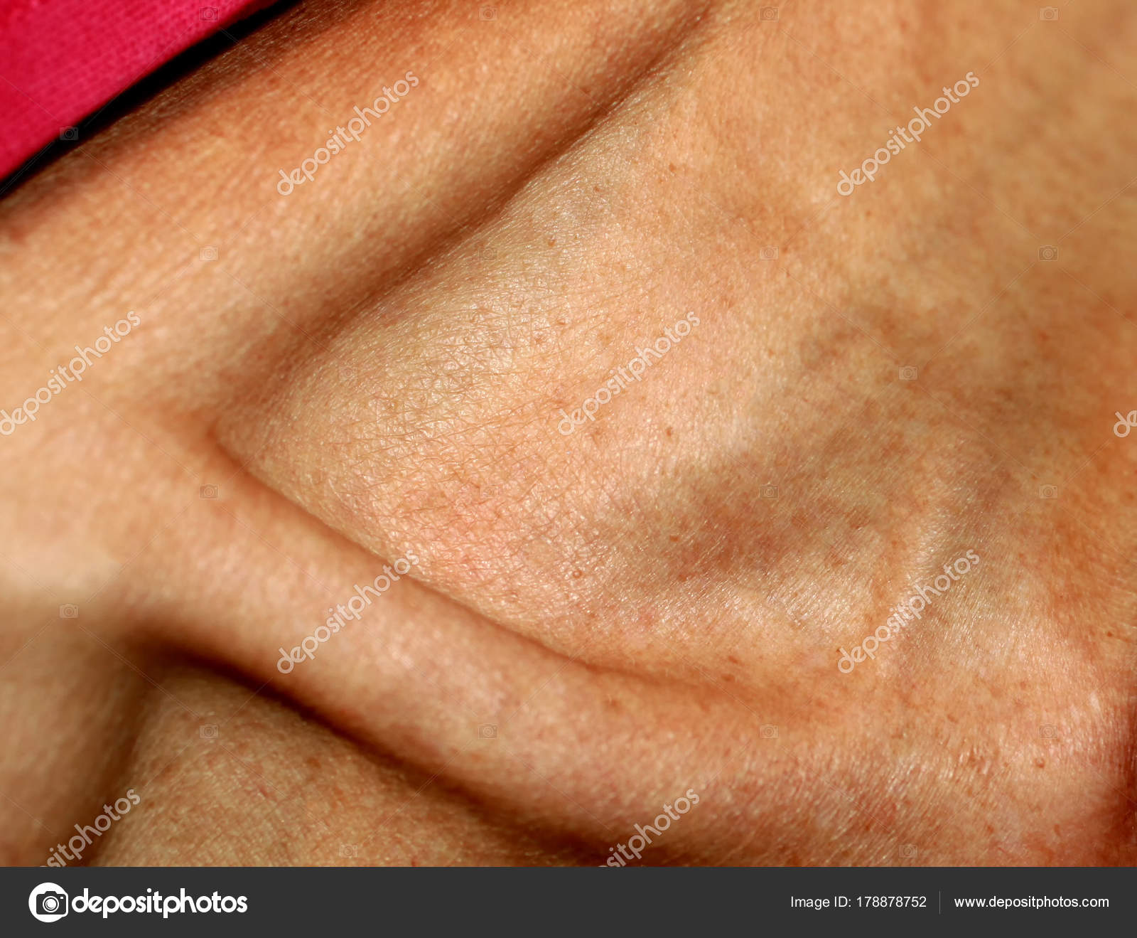 El cuello fino y el hueso de la clavícula — Foto de stock ...