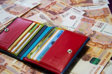 the purse and money