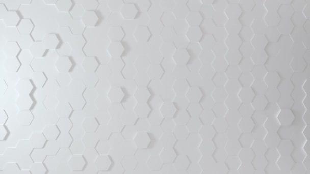 Abstraktní Honeycomb Pozadí Smyčka široký úhel. Jasně bílá 3D animace bezešvé smyčky šestiúhelníkového úlu. Skvělé moderní trendy. Lehká, minimální, pohybující se šestihranná mřížka. Loopable