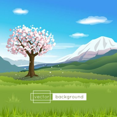 Vector landscape with blooming tree, mountains, blue sky, clouds and green grass in the sunny spring day