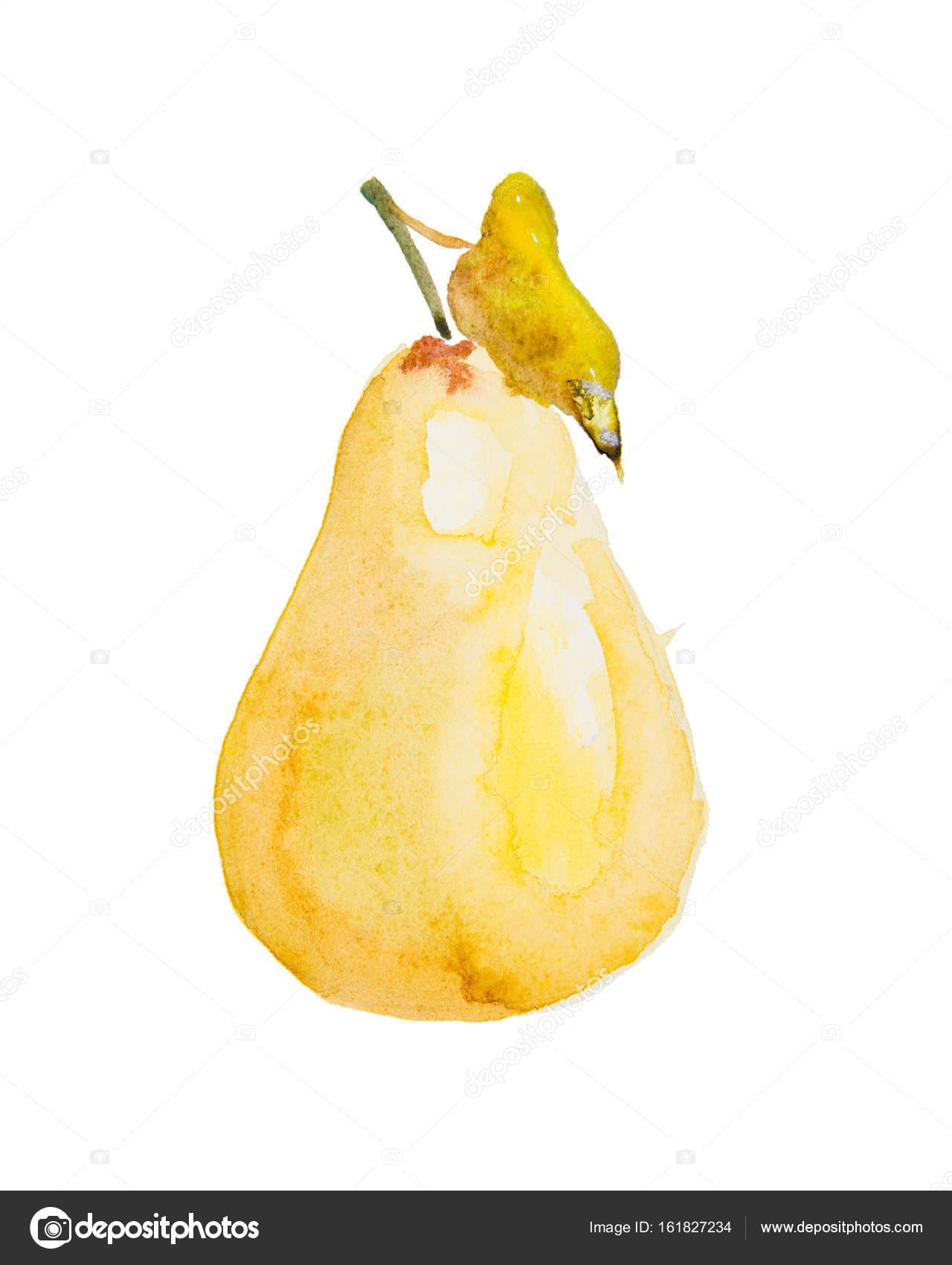 Watercolor Illustration Of A Pear Stock Photo C Lenanichizhenova