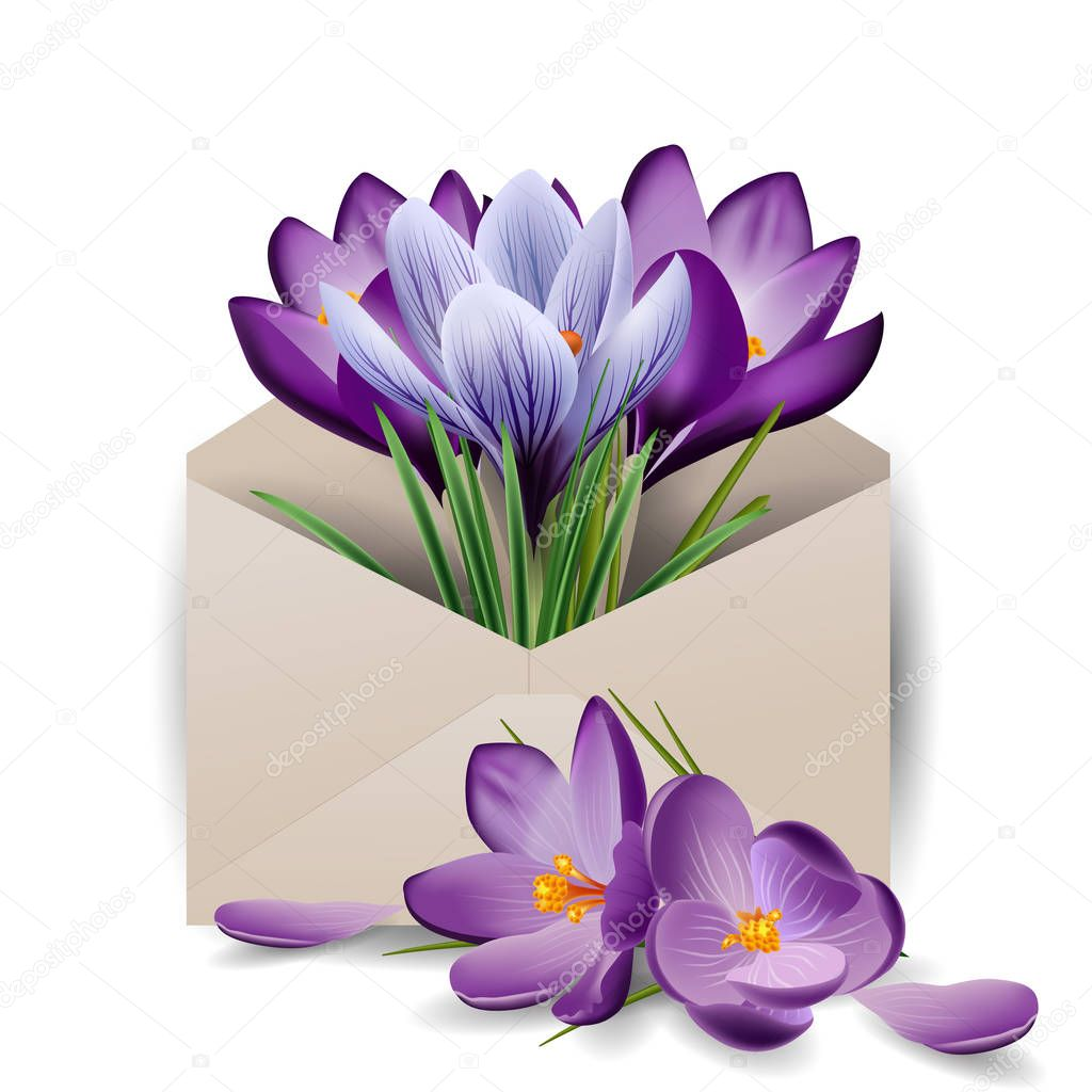 Colorful spring flowers, crocuses in the envelope. Concept spring background. The template vector. The concept of flower delivery.
