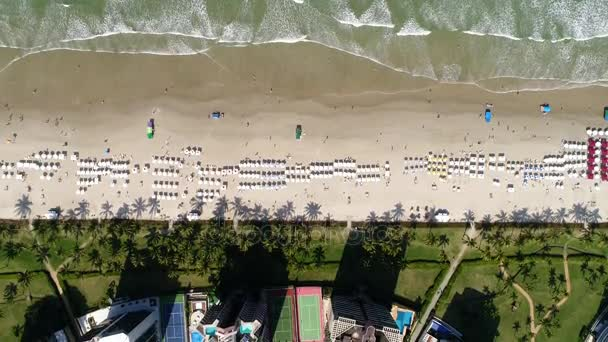 Top View of a Beach by Drone