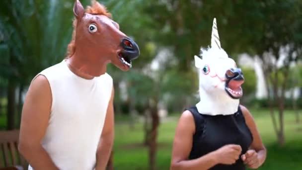 Koně a jednorožec tančí a baví