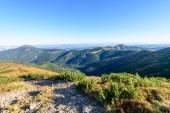Carpazi slovacchi in autunno. sentiero escursionistico su