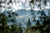Fotografie slovakian carpathian mountains in autumn with green forests