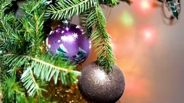 Vánoční koule na větvi.