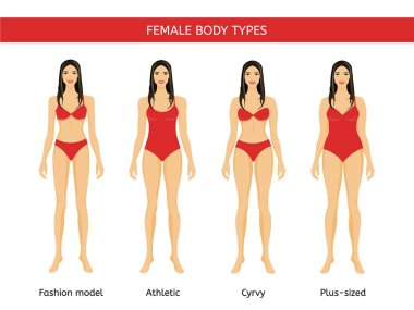 Set of Female body types: fashion model, athletic, curvy and plus size