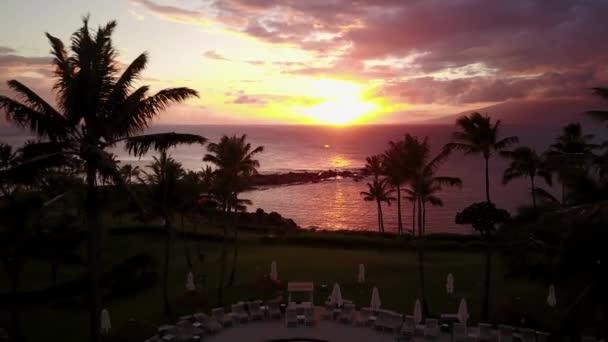 tropické palmy na břehu oceánu při západu slunce na maui, Havaj