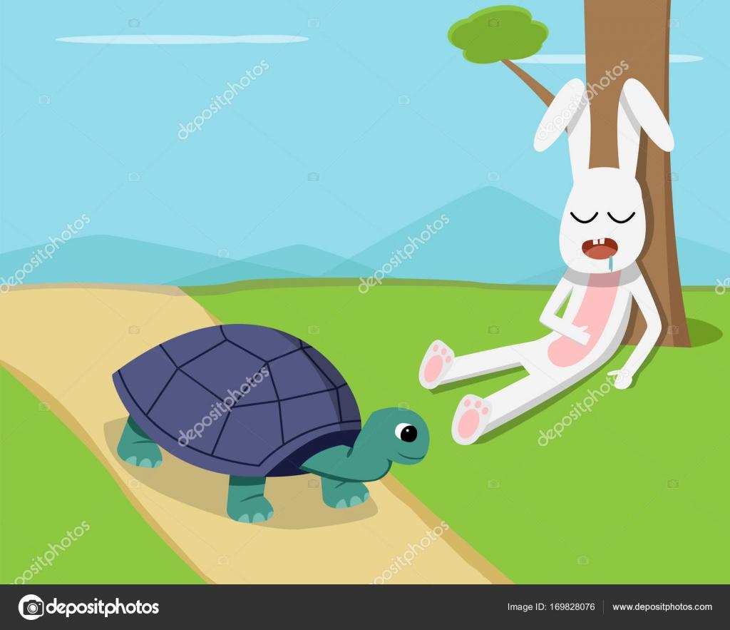 Image result for tartaruga coelho