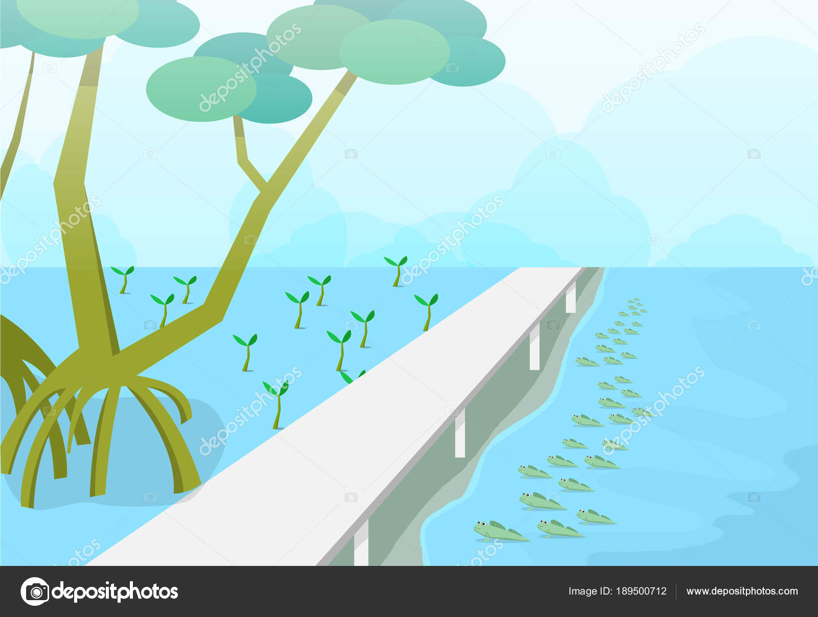 The Best Mangrove Vector