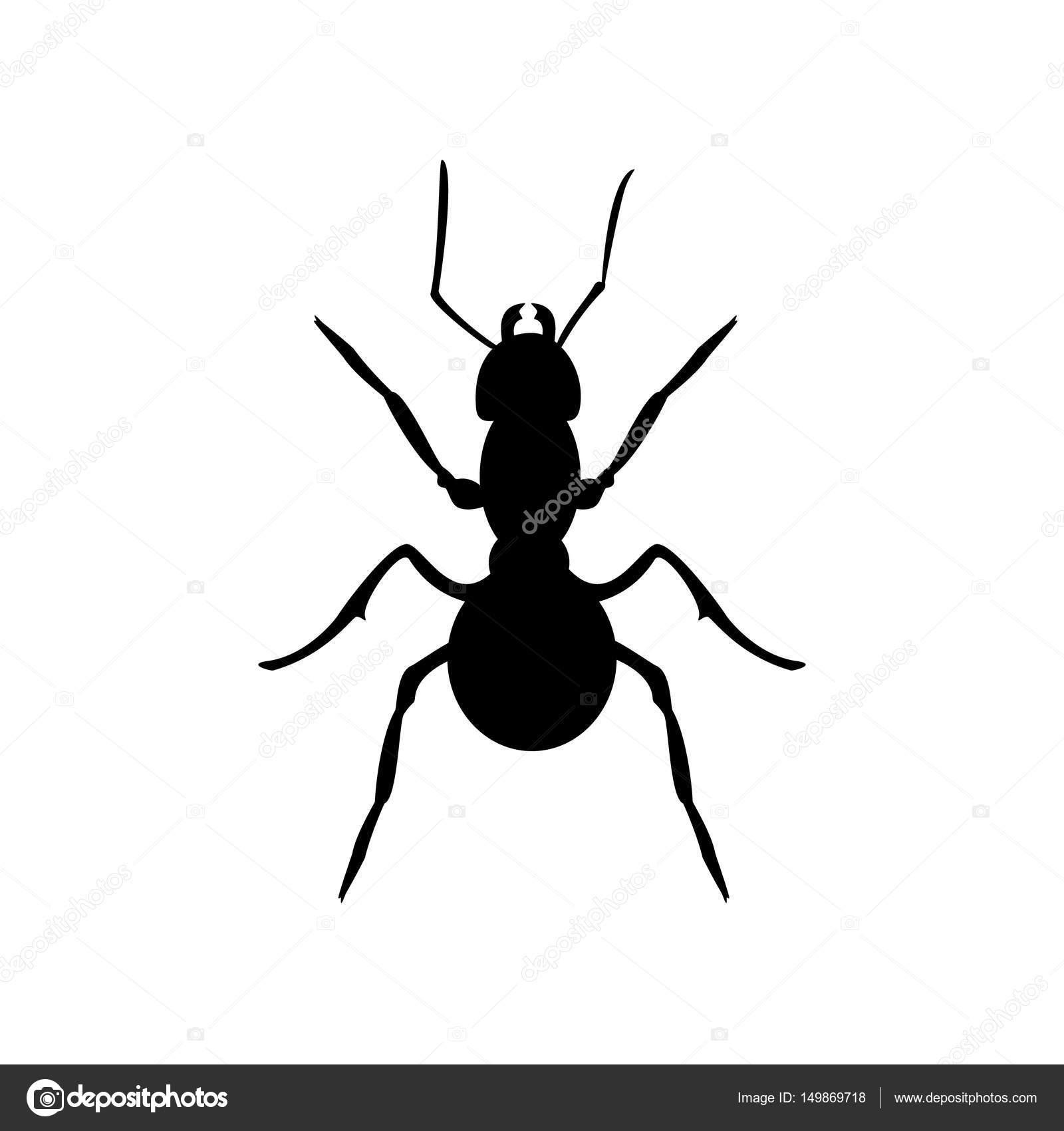 Silueta de hormiga negra — Foto de stock © viktorijareut #149869718