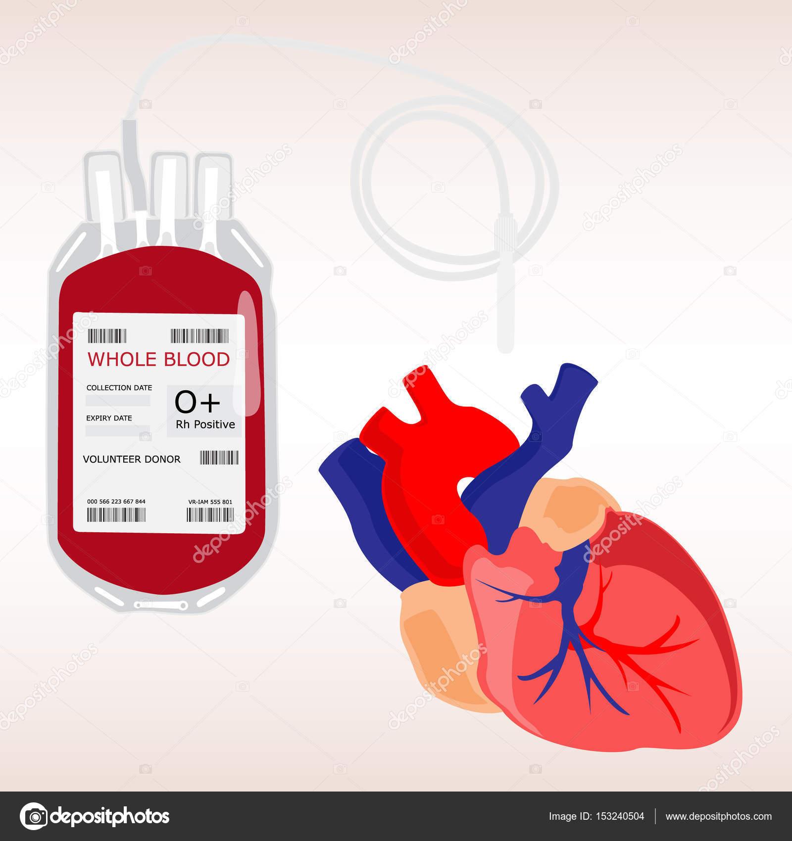 Menschliches Herz und Blut Beutel — Stockfoto © viktorijareut #153240504
