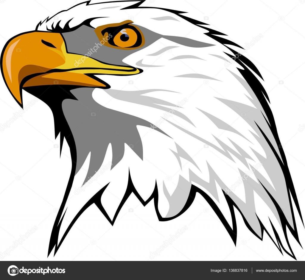 cabeza de águila Vector — Archivo Imágenes Vectoriales © Fishvector ...