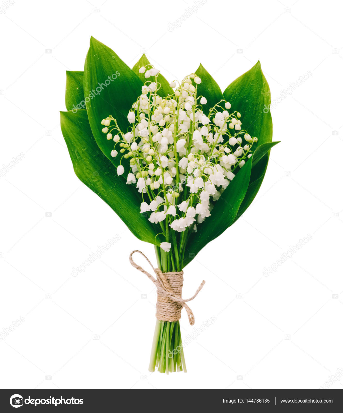 Mazzo Fiori Bianchi.Bouquet Of White Fragrant Flowers Forest Lilies With Green Leaves