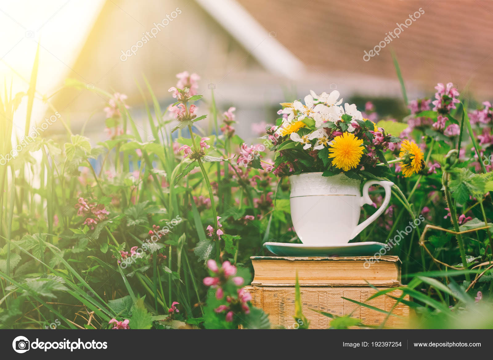 Grass and flowers background Artwork Rural Landscape Stack Old Books Glass Flowers Background Flowering Grass Stock Photo Depositphotos Rural Landscape Stack Old Books Glass Flowers Background Flowering