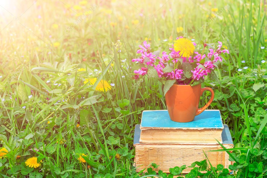 a ceramic cup with flowering plants on a pile of old books on a clearing with a green clover in a warm spring or summer sunny morning
