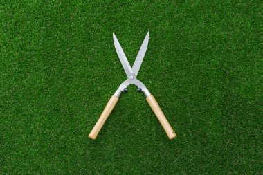 Pruning shears on the grass, hobby and gardening concept