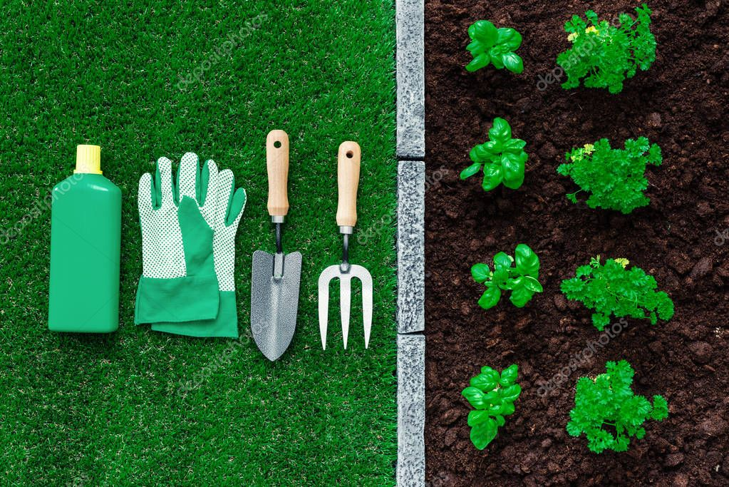 Horticulture and gardening