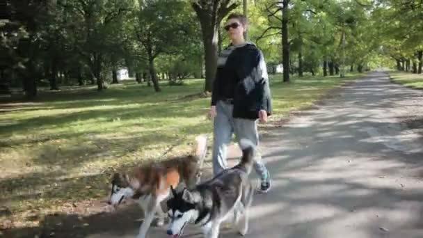 Model dívka projít do parku se psy