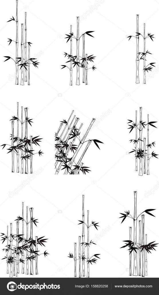 Asiatischen Schwarzen Bambus Tatowierungssatz Stockvektor