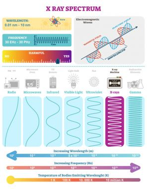 Electromagnetic Waves: X-ray Wave Spectrum. Vector illustration diagram with wavelength, frequency, harmfulness and wave structure.