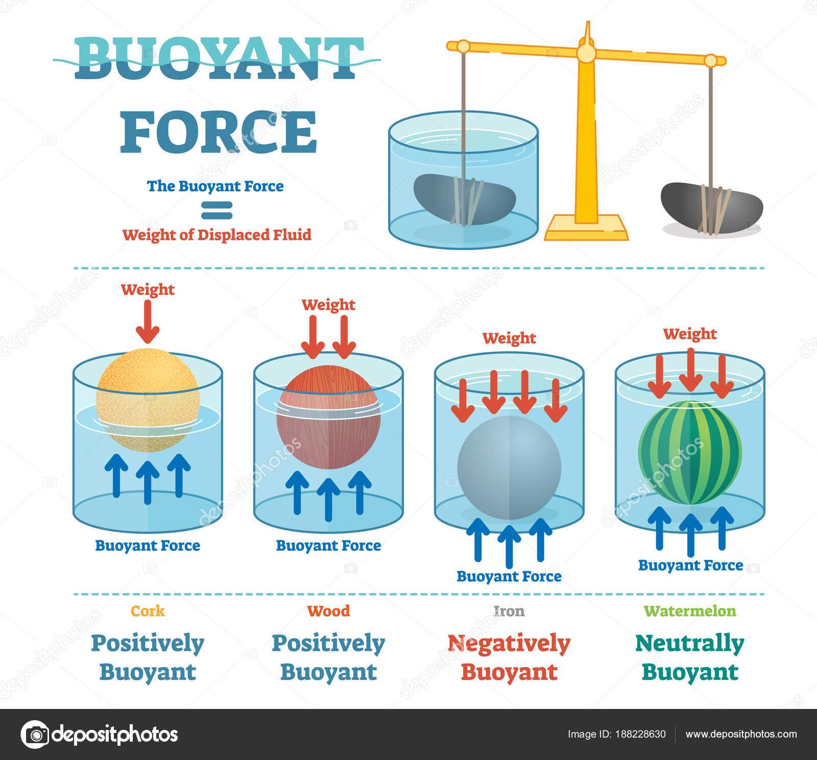 buoyant force illustrative educational physics diagram. Black Bedroom Furniture Sets. Home Design Ideas