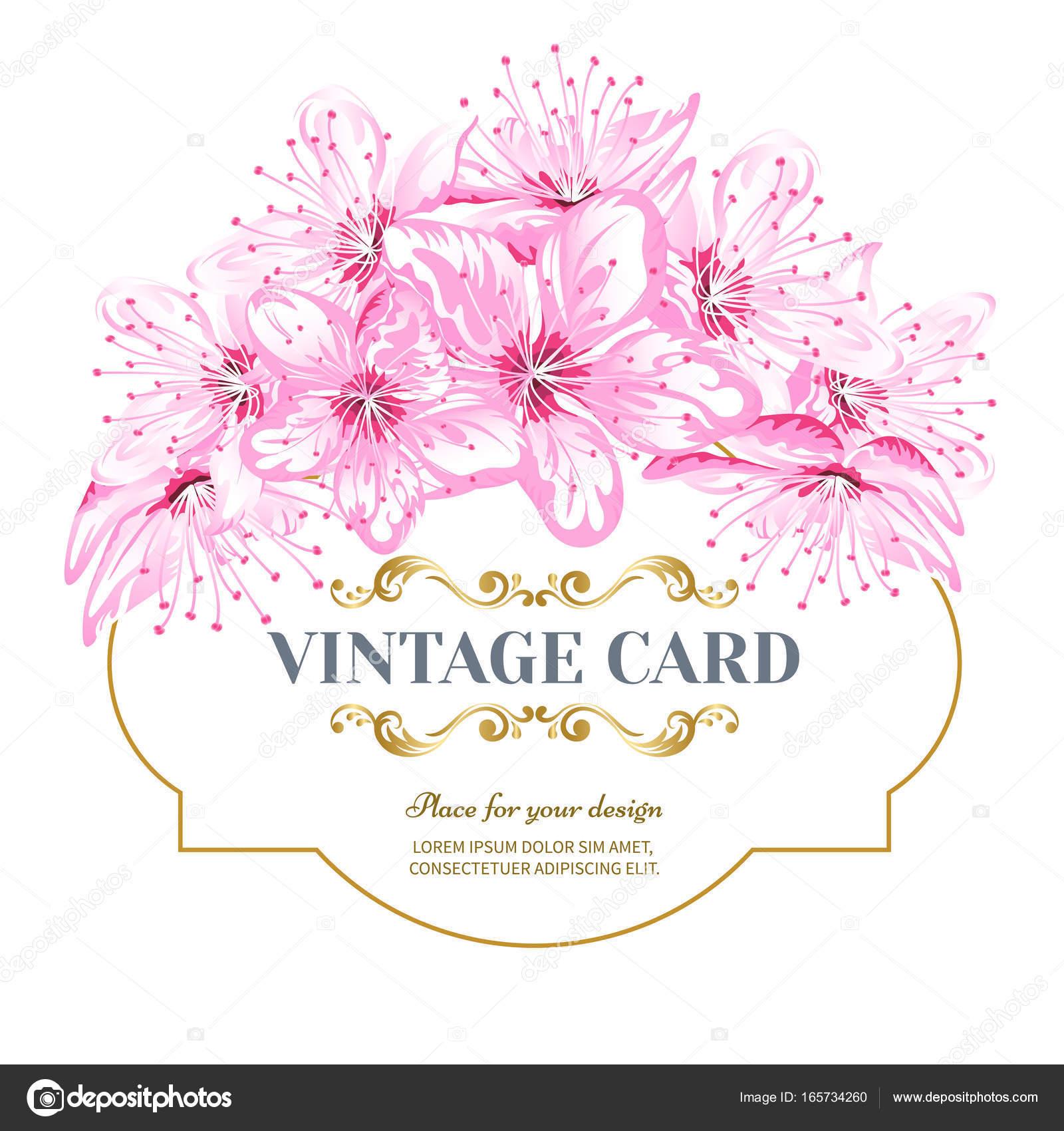 Tarjeta vintage flor de cerezo — Archivo Imágenes Vectoriales ...