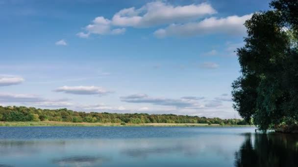 Letní přírodní lesní jezero krajina, Časosběr