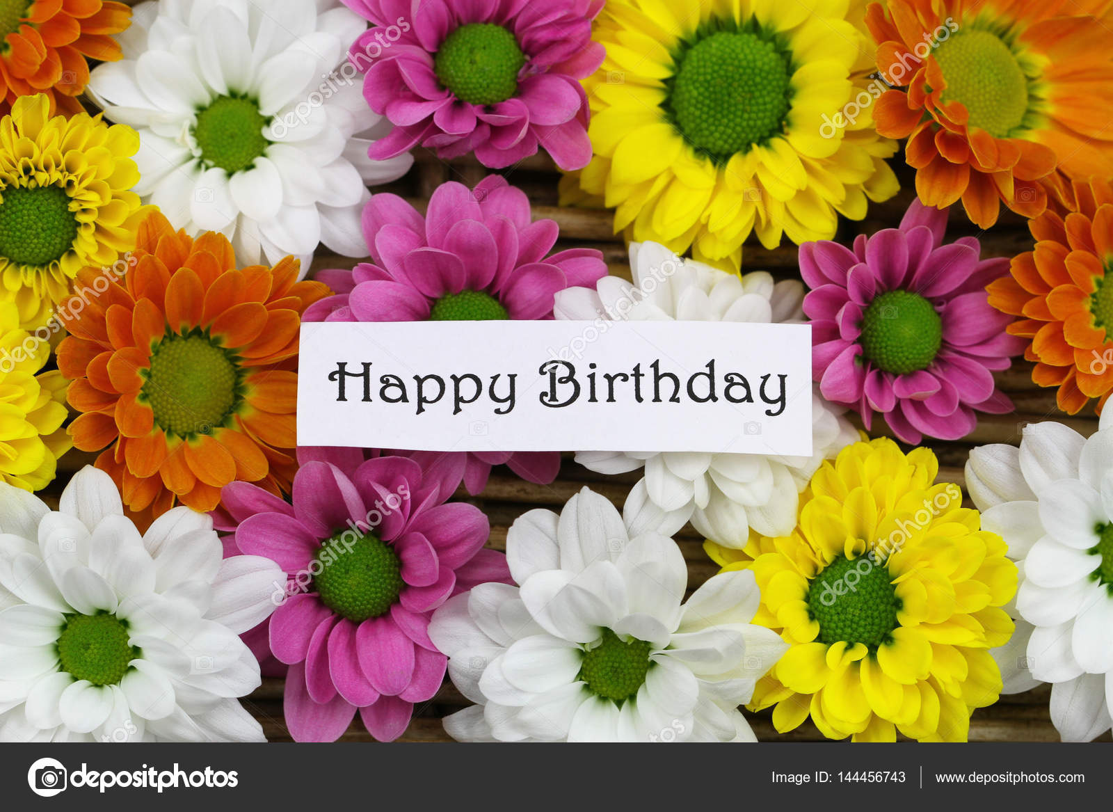 Happy Birthday Card With Colorful Santini Flowers Stock Photo