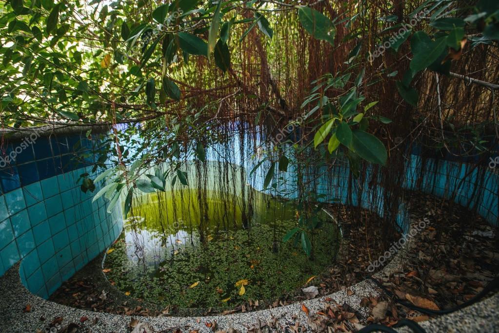 Abandoned pool in tropic villa resort