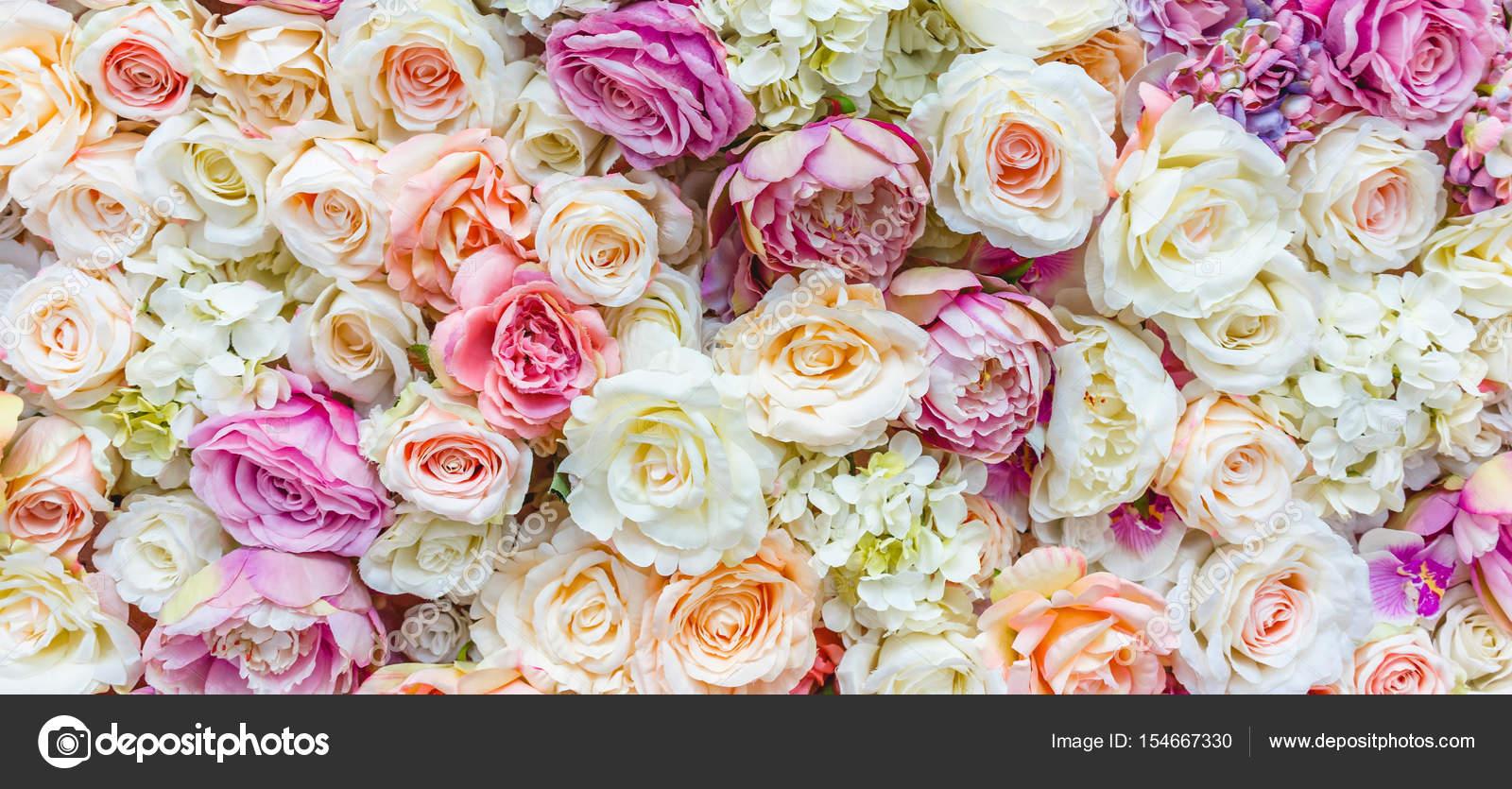Kwiaty Na ścianie Tło Z Niesamowite Biało Czerwone Róże Dekoracje