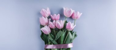 Bunch of pink tulip flowers on blue background. Waiting for spring. Happy Easter card. Flat lay, top view