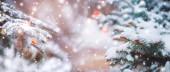 Fotografie frostige Winterlandschaft im verschneiten Wald. Kiefernzweige, die bei kaltem Winterwetter mit Schnee bedeckt sind. Weihnachten Hintergrund mit Tannenbäumen und unscharfen Hintergrund des Winters