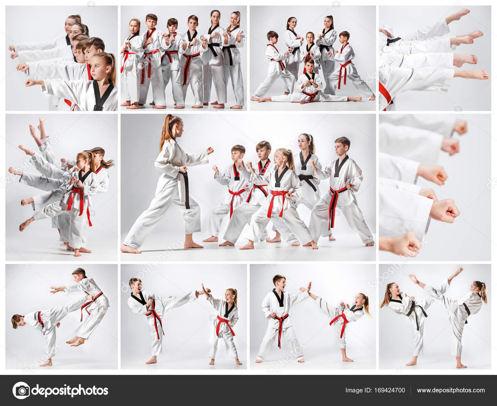 Entrenamiento marciales