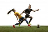Fotografie Fußballerinnen üben und trainieren im Stadion