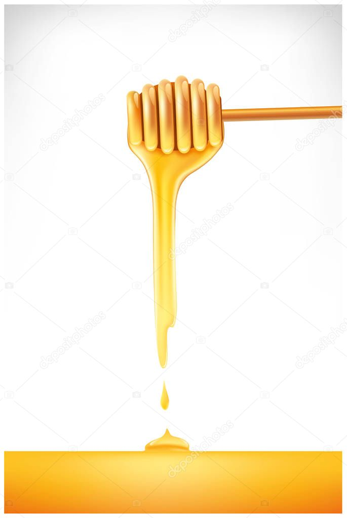 Sweet honey dipper stick with dripping honey